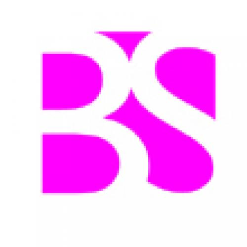 BS and Co. Ltd